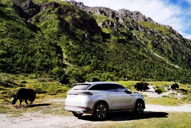 用车轮丈量青藏高原 BEIJING-X7车主在路上
